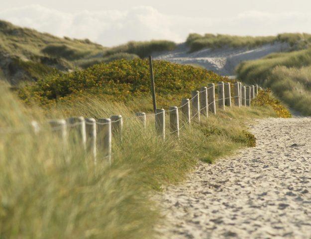 Sylter Strand mit Dünen